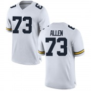 Replica Youth Willie Allen Michigan Wolverines White Brand Jordan Football College Jersey
